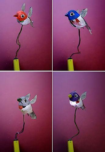 Oiseau.toto