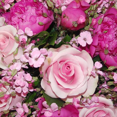 Fleurs.dominique.2
